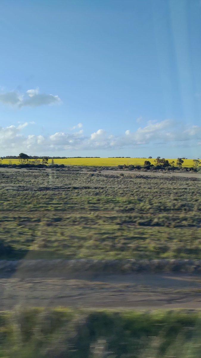 地帯 穀倉