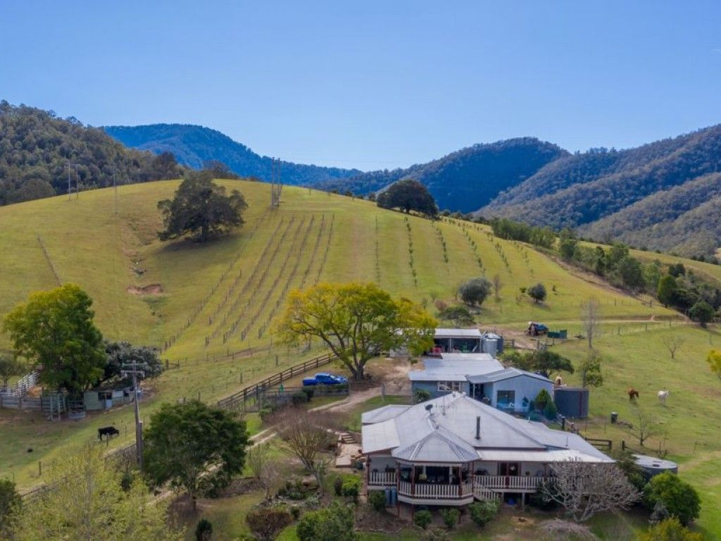 HOME - 534 ACRES - 5 DAMS Visit: https://t.co/dGpIzobj6e  Private 534 acre property running 70 breeders and 1800 Macadamia Trees #NSW #Bellbrook #ForSale #Farmproperty #RealEstate #Farmers #Farm https://t.co/iEhWyRwef0