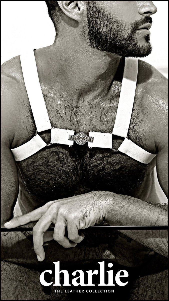 THE CHARLIE LEATHER COLLECTION. Featuring the Single Grecian Harness in white leather. SHOP NOW at https://t.co/KkePkfVjnC #Charliebymz#forevercharlie#charliefan#charlieleather #Charlie #leather #chest #harness https://t.co/txYezAapVf