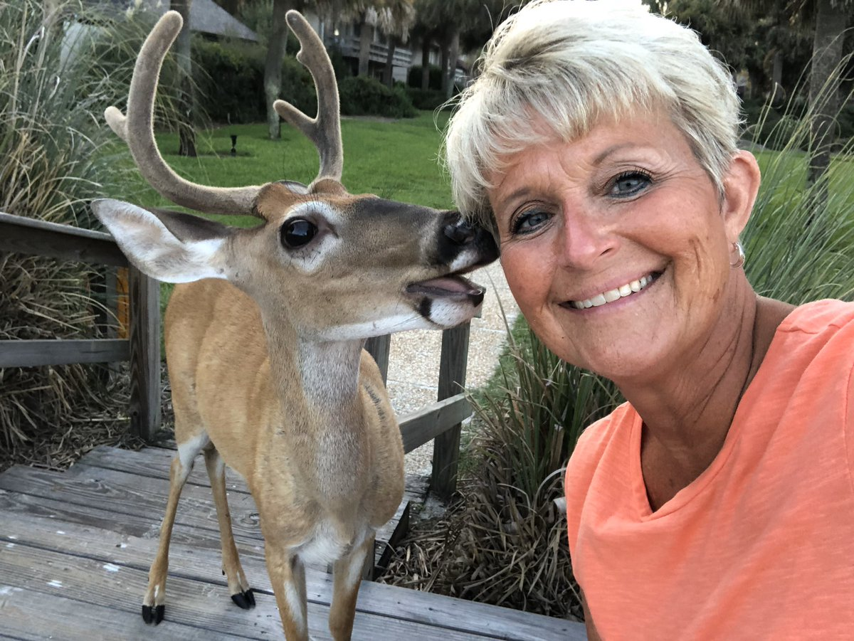 @sjacobm321 I go to Fripp Island every year, and the deer are one of my favorite things.