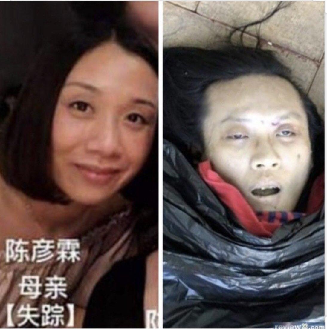 Chan Yin Lam