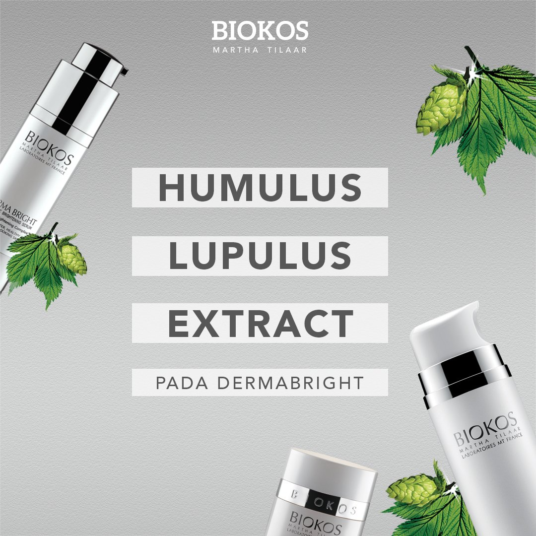 Kehebatan Biokos Dermabright ada pada Humulus Lupulus Extract yang mampu menghambat melanocytes dan keratinocytes pada kulit yang menyebabkan hiperpigmentasi  #Biokos #FeelAliveAtAnyAge https://t.co/rGAT9TwHSV