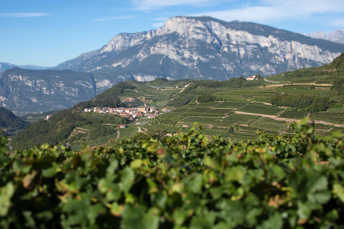 .@carsonbodnarek writes about how he travels to the Italian mountains with his wine glass and Trentodoc: https://t.co/3g1c1oNesF https://t.co/nbDxGM8KSa