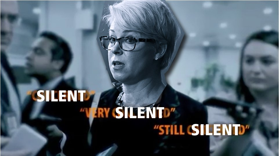 .@VoteAnnJohnson will fight in Austin for full medicaid expansion & common sense gun laws. Sarah Davis is still #SilentSarah on these critical issues. Donate to Ann here. Let's make sure we #FlipHD134. https://t.co/WIJzakbEbc https://t.co/jpPEkjCwEg