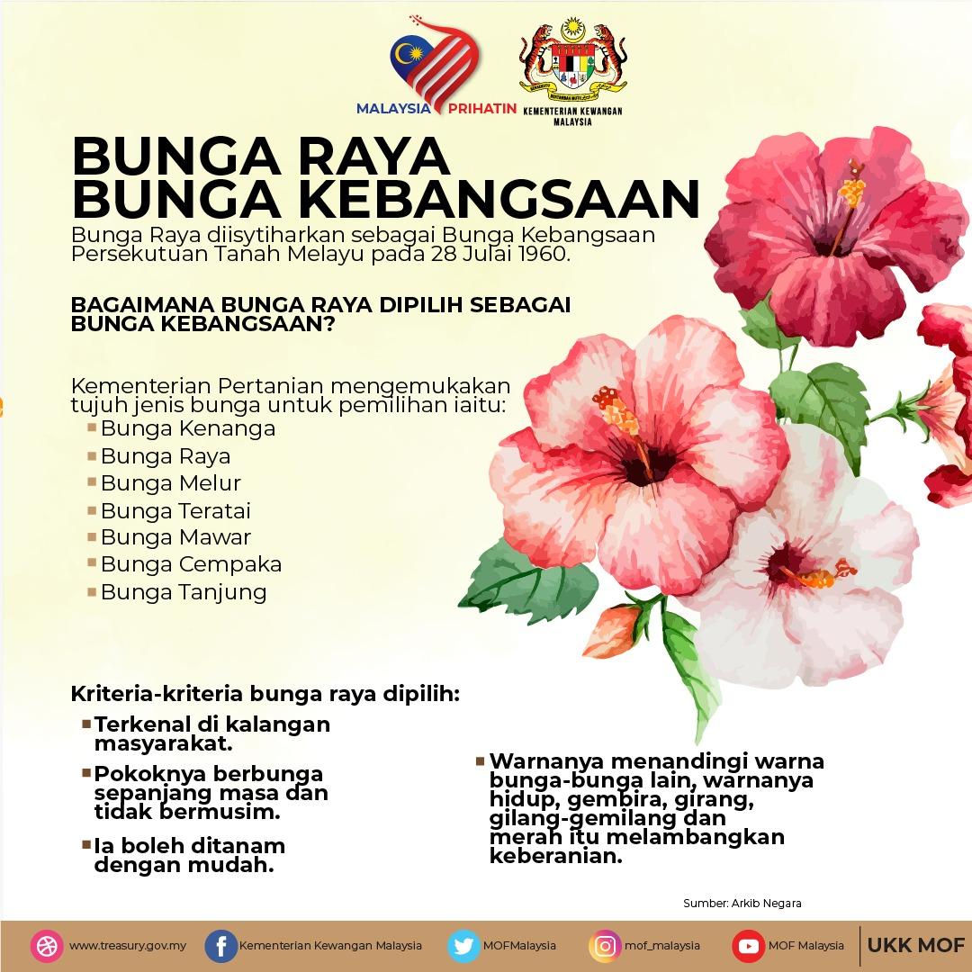 Ministry Of Finance On Twitter Kenali Bunga Raya Bunga Kebangsaan Malaysiaprihatin Merdekamoment Malaysiakumerdeka Kibarjalurgemilang