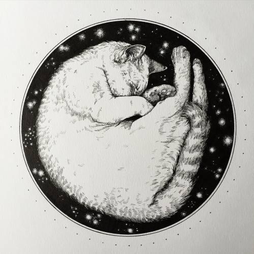"""Στις 21:35 ξεκινάει η εκπομπή ''Kittens will take their revenge in cypher space'' ΚΕΦ 33.3.14 """"Chaos as a disorganized rely link ,sing the sink is sick, don't forget to smash it all"""" Ακούτε στους 93.8 στα fm και στο https://t.co/7Bszf21JOA https://t.co/h004gwcZuw"""