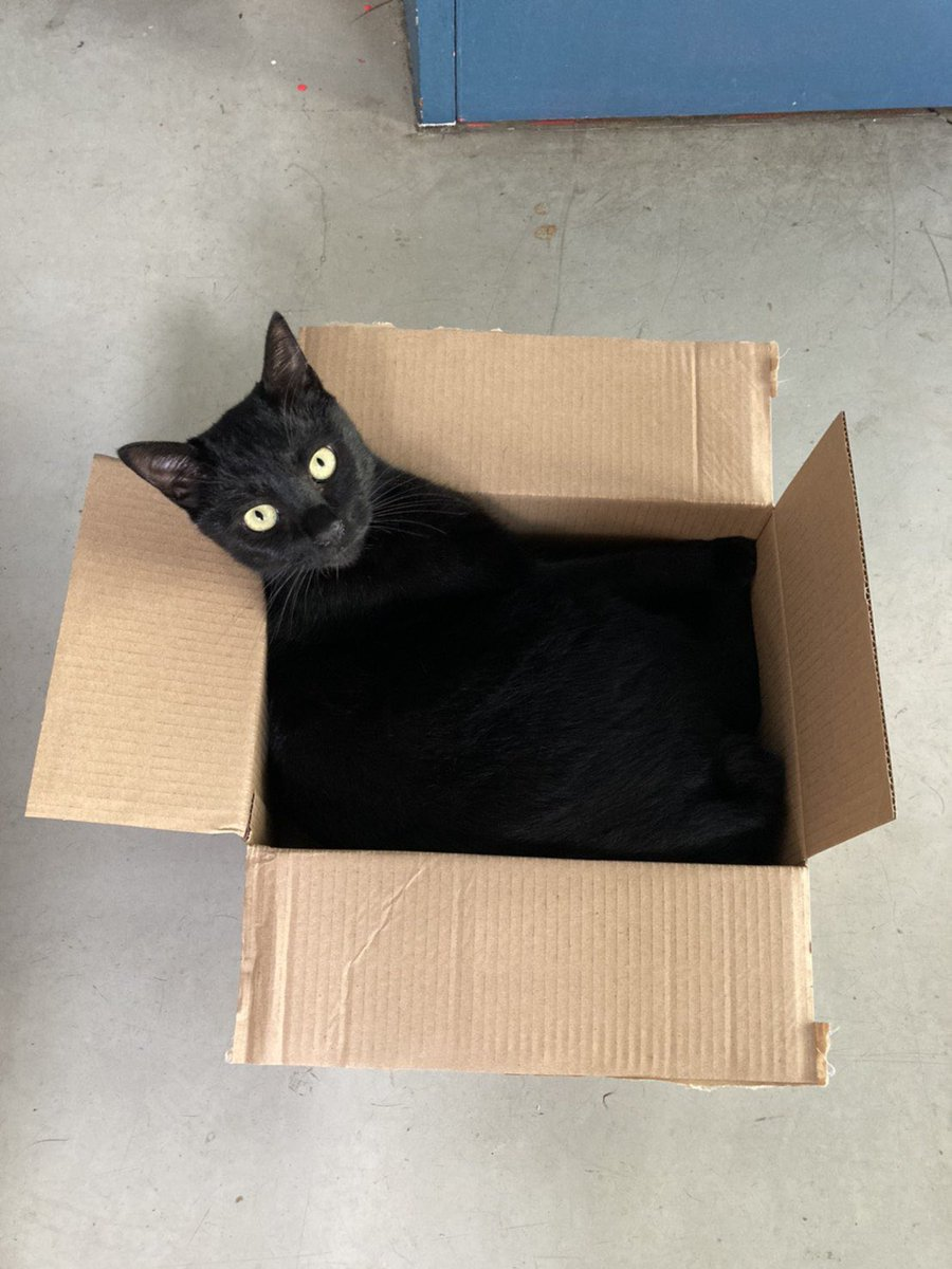 融入了箱子的黑暗之中 EgT7gIGVoAAGyBO