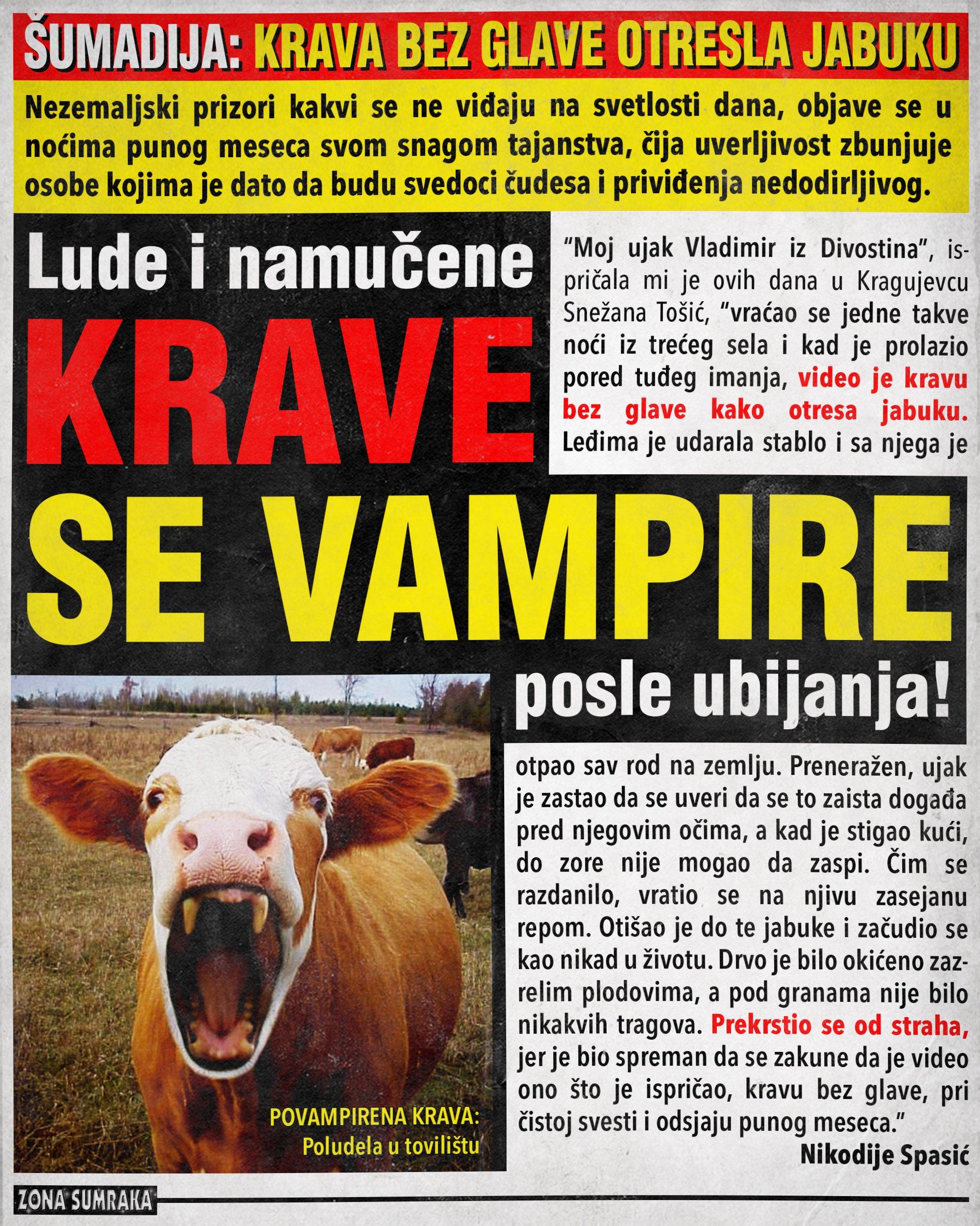 Lude i namučene krave se vampire posle ubijanja!!!