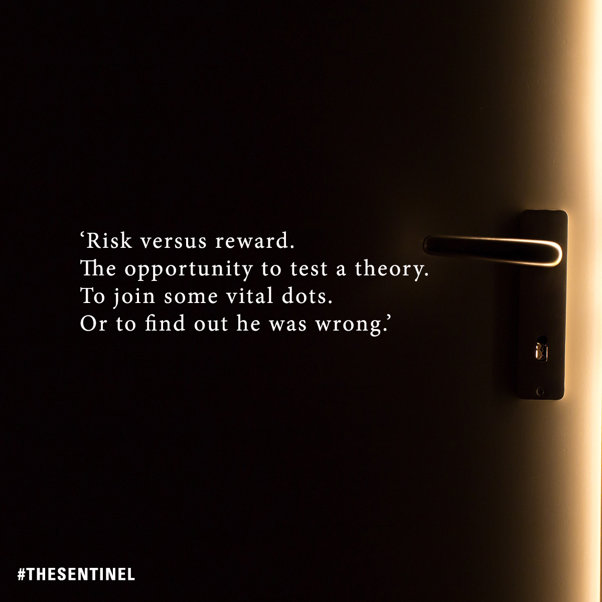 Risk versus reward. The opportunity to test a theory. To join some vital dots. Or to find out he was wrong. #TheSentinel smarturl.it/TheSentinel
