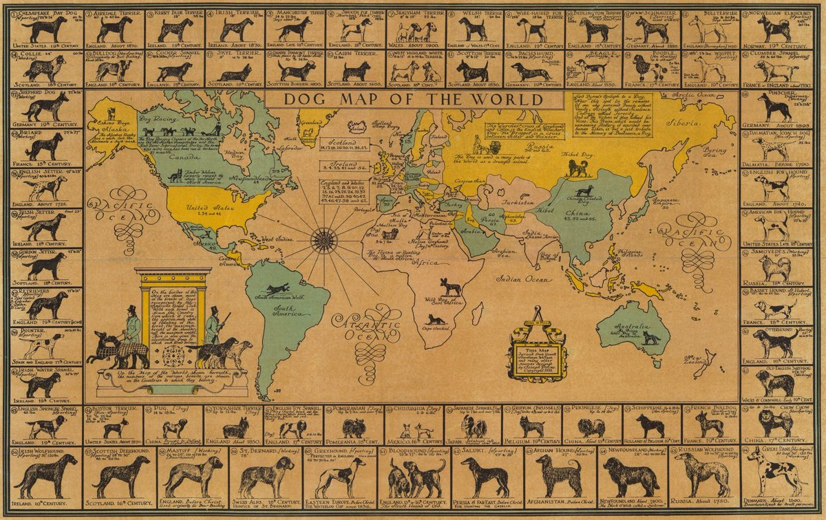 Image of: Xavi Ruiz On Twitter 1933 Historical Dog Map Of The World Internationaldogday