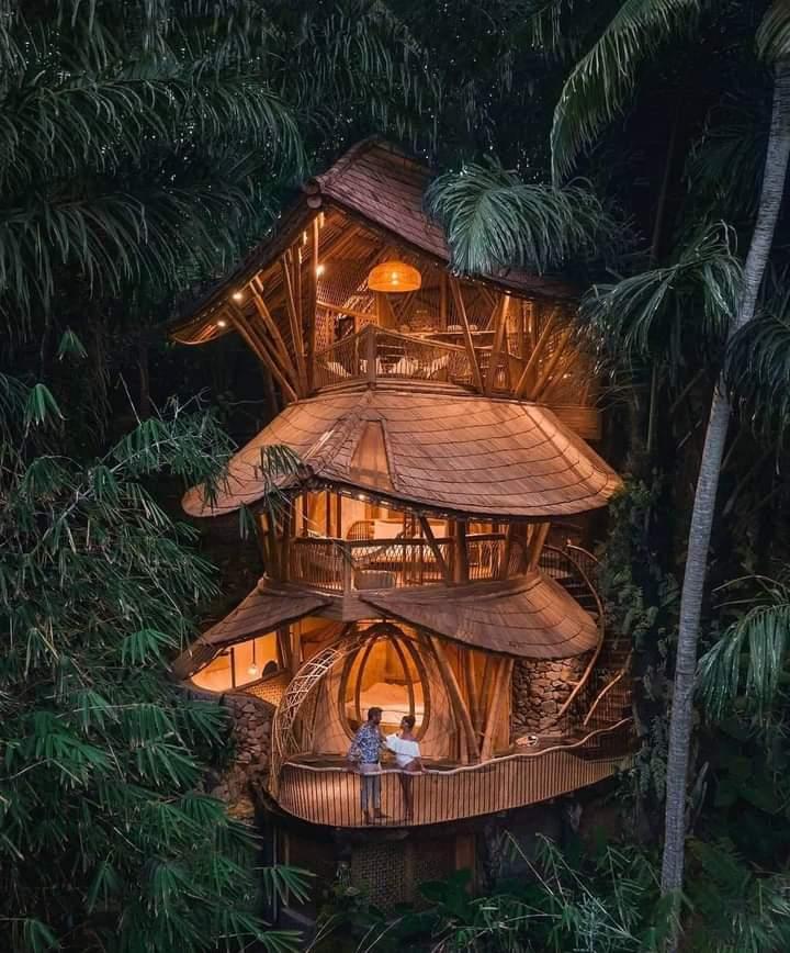#Bali 🌴🌿🌿 #photography #NaturePhotography #naturelover #beautifulworld #Tourism https://t.co/bWJF9HzHhX