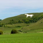 Image for the Tweet beginning: We are CPRE, the countryside