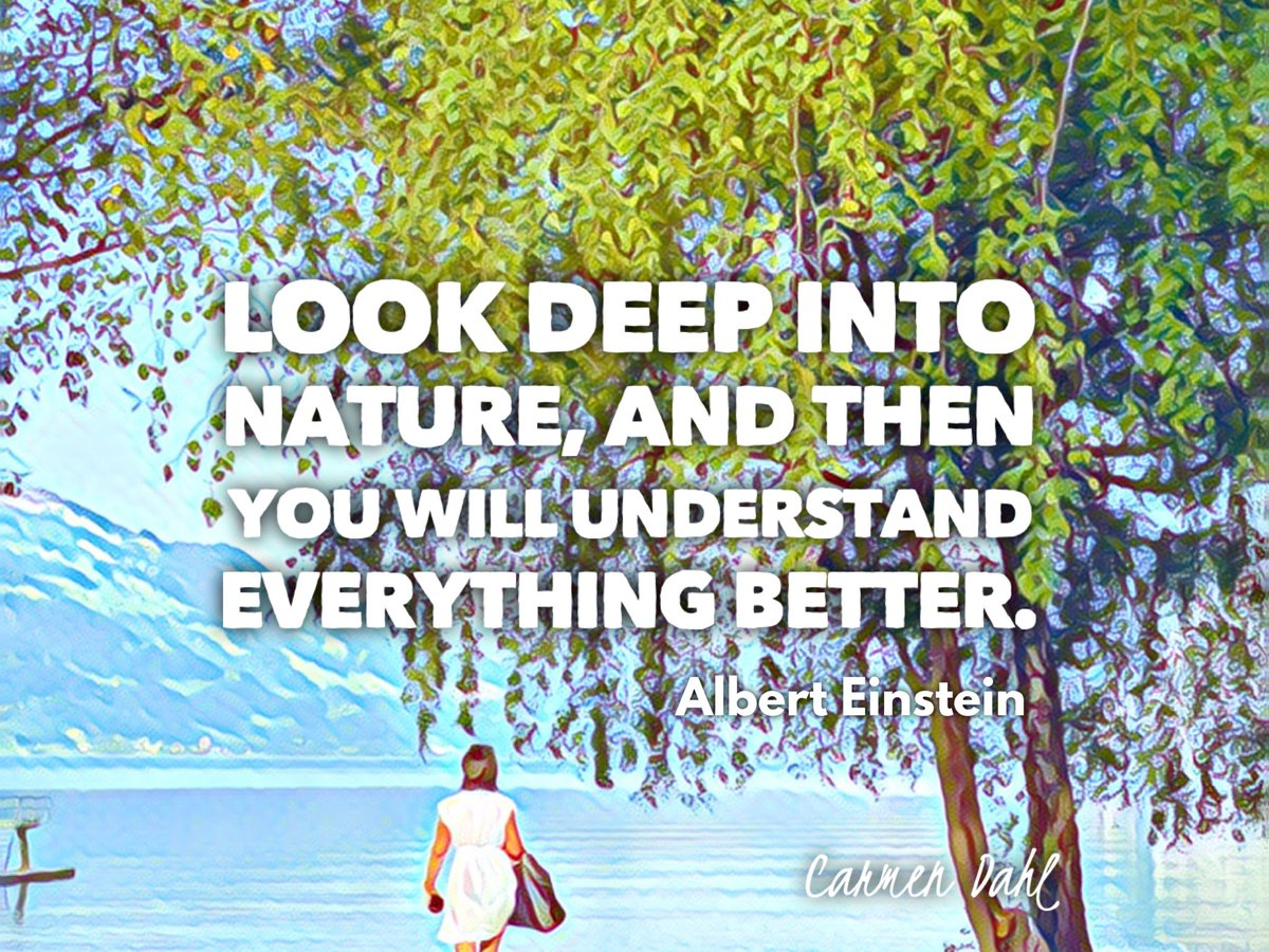 🔸Look deep into nature, and then you will understand everything better. #quote A. Einstein  #ThursdayThoughts #ThursdayMotivation #quoteoftheday #IQRTG   @DrJDrooghaag @Victoryabro @Nicochan33 @FrRonconi @baski_LA @RagusoSergio @Droit_IA @robmay70 @fogle_shane @Sharleneisenia https://t.co/LE6pu41aKm