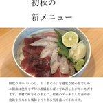 chiaki_hontenのサムネイル画像