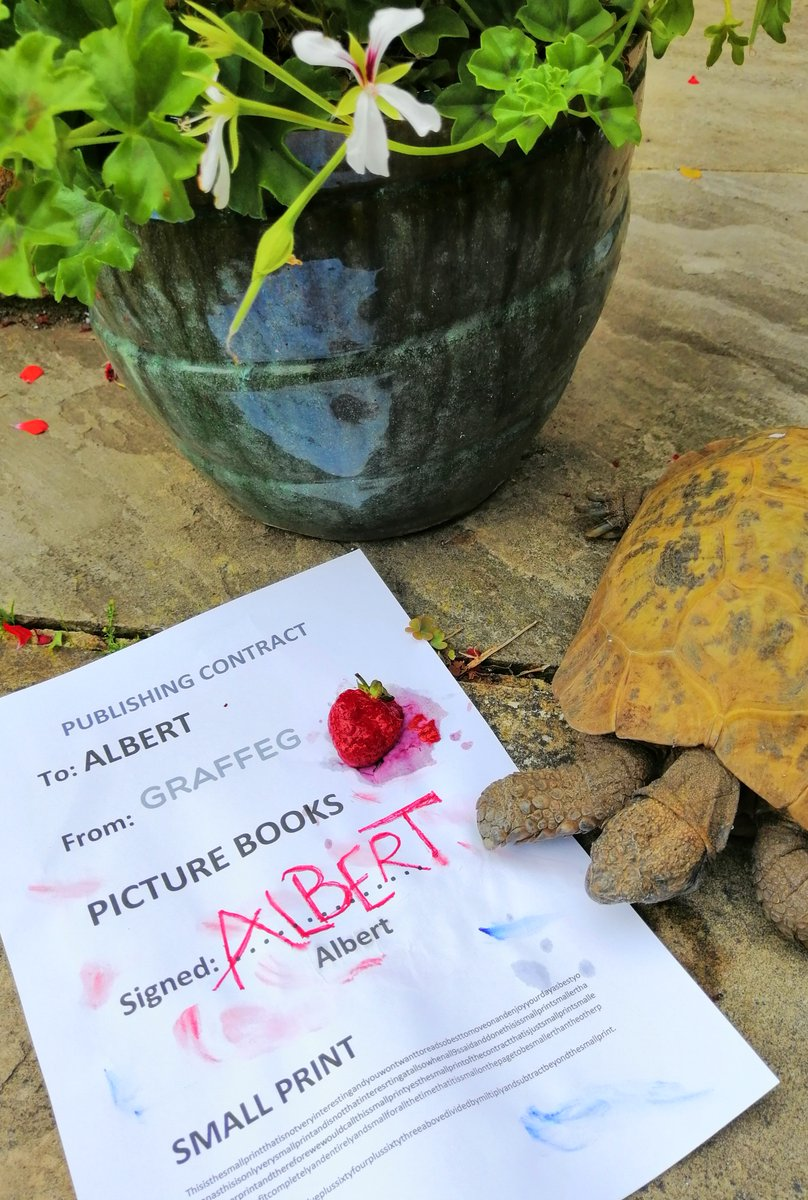 @andtheHare @RawlinsonJulia @AlbertTortoise @graffeg_books @mrjamesmayhew @zebsoanes @JackieMorrisArt @nicolakidsbooks @CathyFisherArt @themaxlow @andrewwhitson92 Thank you. Much appreciated    #NoPressure   Sorry @AlbertTortoise made such a mess of the #contract Work Experience Weasel so diligently mailed out. He's a #tortoise.    #AlbertTheTortoise https://t.co/dFXDWyq2vg