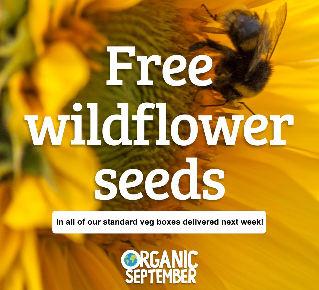 It's #OrganicSeptember next week!  a wonderful @SoilAssociation campaign designed to raise awareness of #organic growing and food. To celebrate we will be putting a packet of organic wild flower seeds in all standard #vegboxes delivered next week! watch out for yours :) Ali W https://t.co/SLwQvZOKgZ