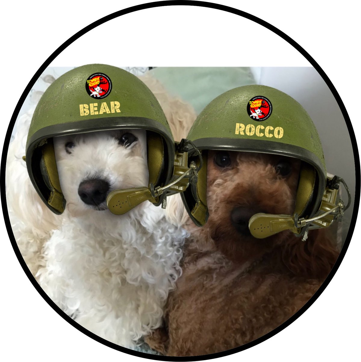 Welcome to #ZSHQ Rocco and Bear @RBear82 we have prepared your patrol kits, bark when you need support from @ZombieSquadHQ *salutes* https://t.co/xPjUSFNbEx