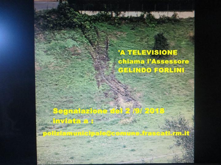 @EnteRomaNatura #Coronavirus, #bollettino della #RegioneLazio del #12Agosto CRISI IDRICA A FRASCATI E LE BUCJE DI GIUSEPPI & CO.   PREVENIRE E' MEGLIO CHE CURARE, MA CE VORRIA GENTE COME GELINDO  https://t.co/Dw1yAQDCV5 https://t.co/m91wIlztdy