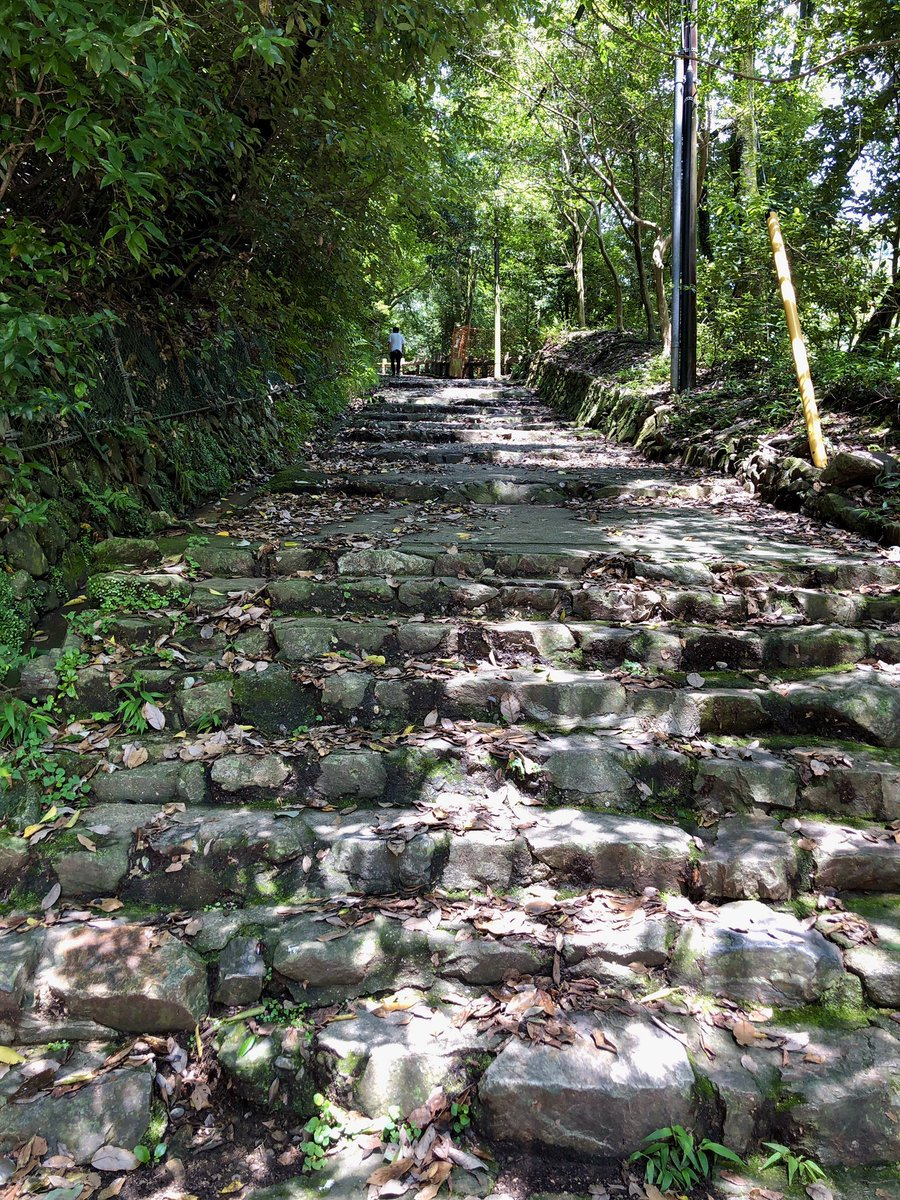 箕面公園桜谷コースの入口 https://t.co/k2Jgzv1HZD  #ハイキング #hiking #登山 #mountaineering #山登り #大阪府 #大阪 #池田市 #ハイキングコース #箕面公園 #山 #mountain #箕面 #ウォーキング #walking #登山コース #景色 #scene #桜谷コース #尾根 #mountainridge #石段 #stonesteps https://t.co/NUQHT7SMhl