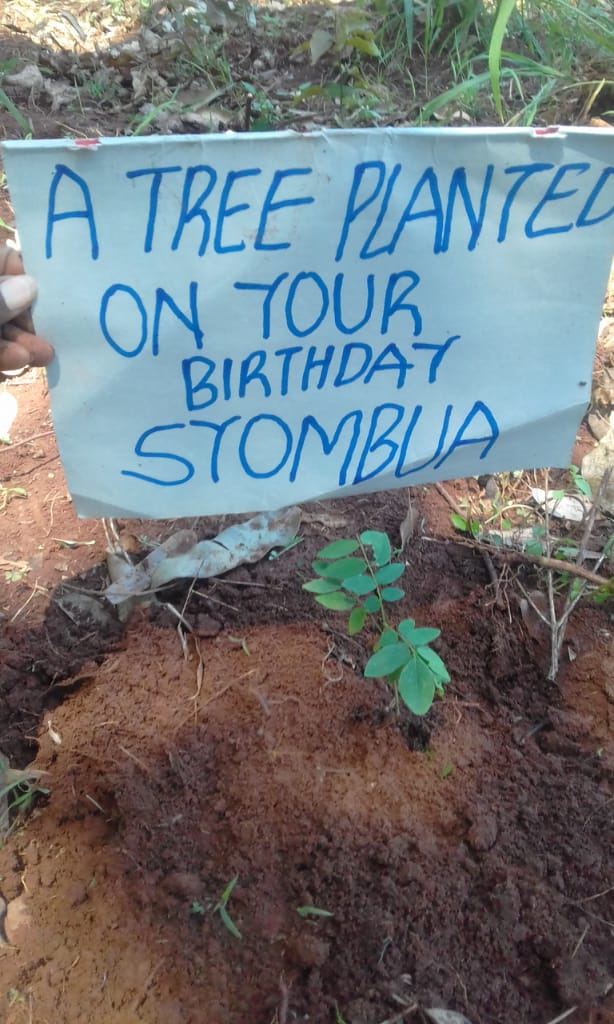 """The best birthday gift you can get thanks @Monarijulius...we all believe #lifesbetterwithtrees #climateactionispossible...let's do our parts to avoid the question""""what action did you take in climate criss""""in Future #actionclimate https://t.co/eXE5GRWKn1"""
