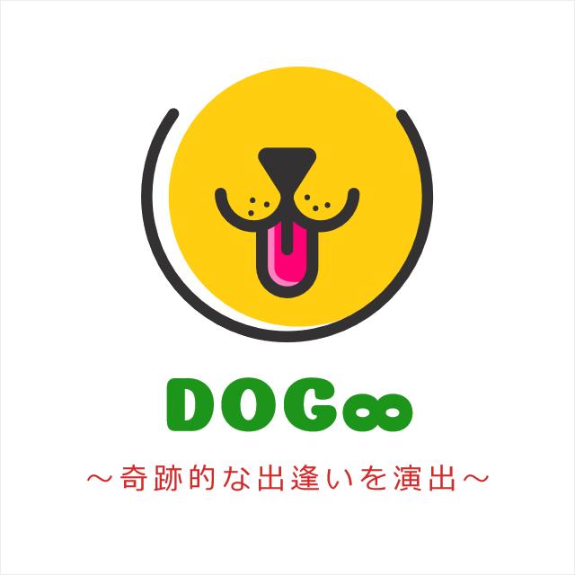 Dog8/ドッグエイトでは、優良ブルーダーがブリーディングした最高級の子犬のみを販売しています!詳細情報はこちらから ⇒ https://t.co/bBKzqy3fZI #子犬販売 #九州 #中国地方 #子犬紹介 #ブリーダー https://t.co/4EvgwEu4Dz