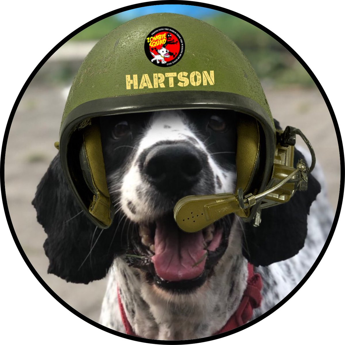 Welcome to #ZSHQ Pvt Hartson @CancerDoggy we have prepared your patrol kit, bark when you need support from @ZombieSquadHQ *salutes* https://t.co/J5zSbCmm8l