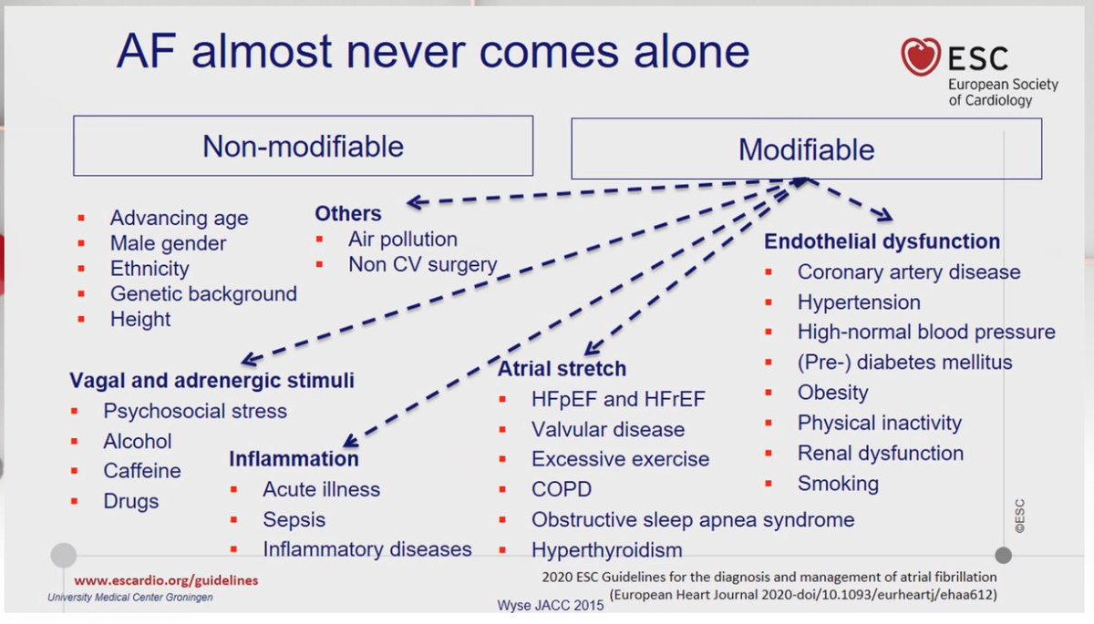 Important message on #Afib guidelines 2020 @escardio #ESCCongress AF almost never comes alone