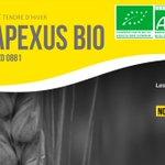 Image for the Tweet beginning: 🚜Nouveauté #BLE APEXUS #BIO 🌾 👉BLÉ