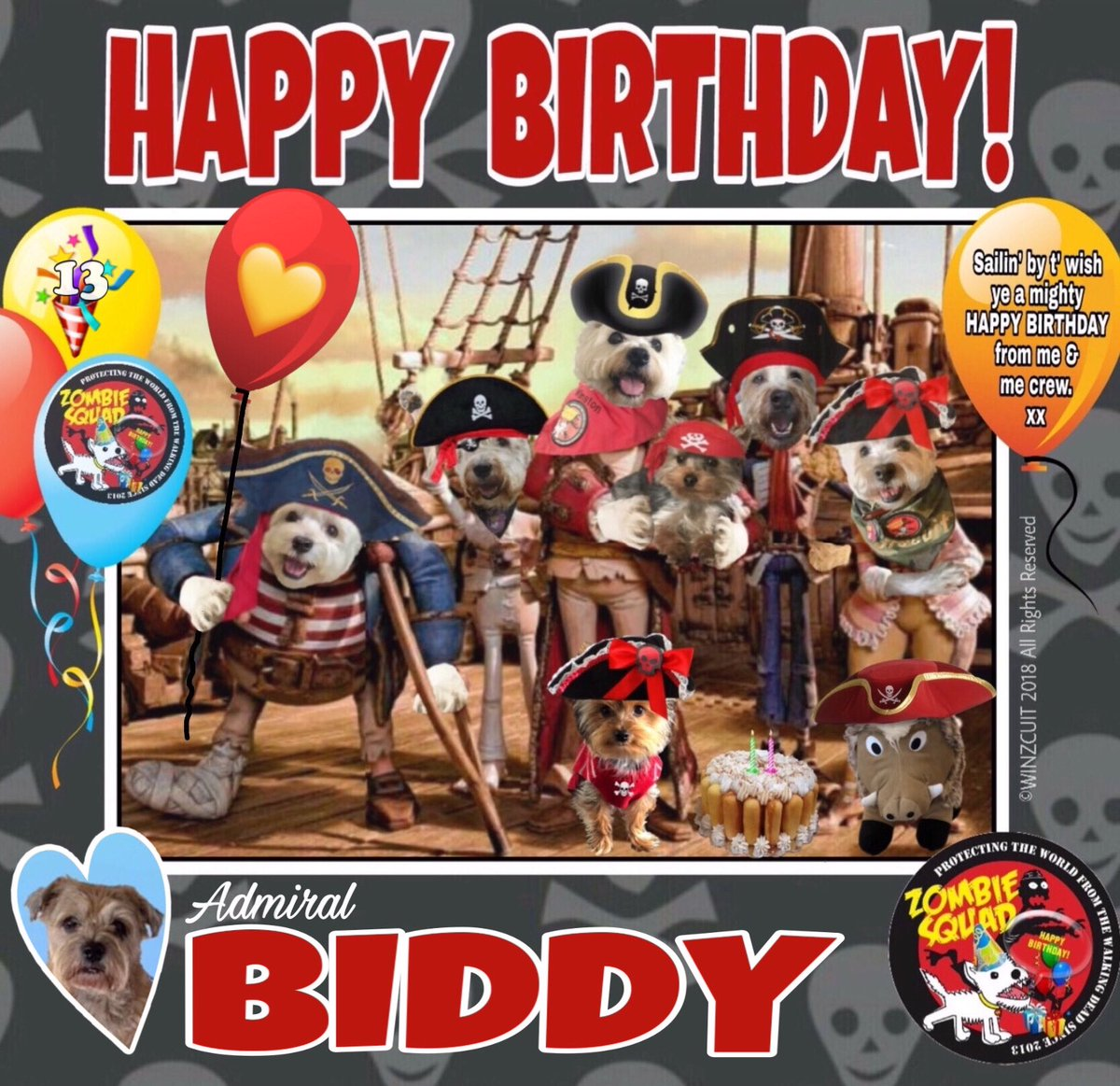 🎂Wishing a very 🎁HAPPY 13th BIRTHDAY🎉 to our pawtastic pal & Head of ZS Training, ADMIRAL BIDDY from Leada Billy & your ZombieSquad pals.   We hope your special day is full of tasty treats, belly rubs & cayke,  very dear pal. 💜🎂🎁🎉 @LordBiddy @MadSCWT @ZombieSquadHQ #ZSHQ https://t.co/8wFgffVyaV