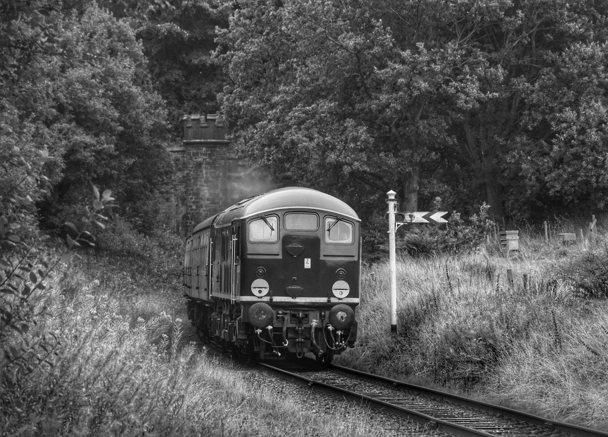 The honours of hauling the first diesel service train since early March went to Class 24 D5054 'Phil Southern' @eastlancsrly @elrchairman @elrdiesel #eastlancashirerailway #class24 #diesel #diesellocomotive #d5054 #philsouthern https://t.co/uDtOpWtkgU