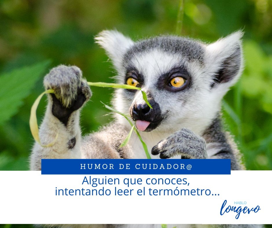 La dominguera... 🤭  #HabloLongevo  #Salud #saludable #SaludMental  #QuedateEnCasa #humor #cuidador #FelizDomingo #felizdomingoatodos https://t.co/hQAypZQZwn