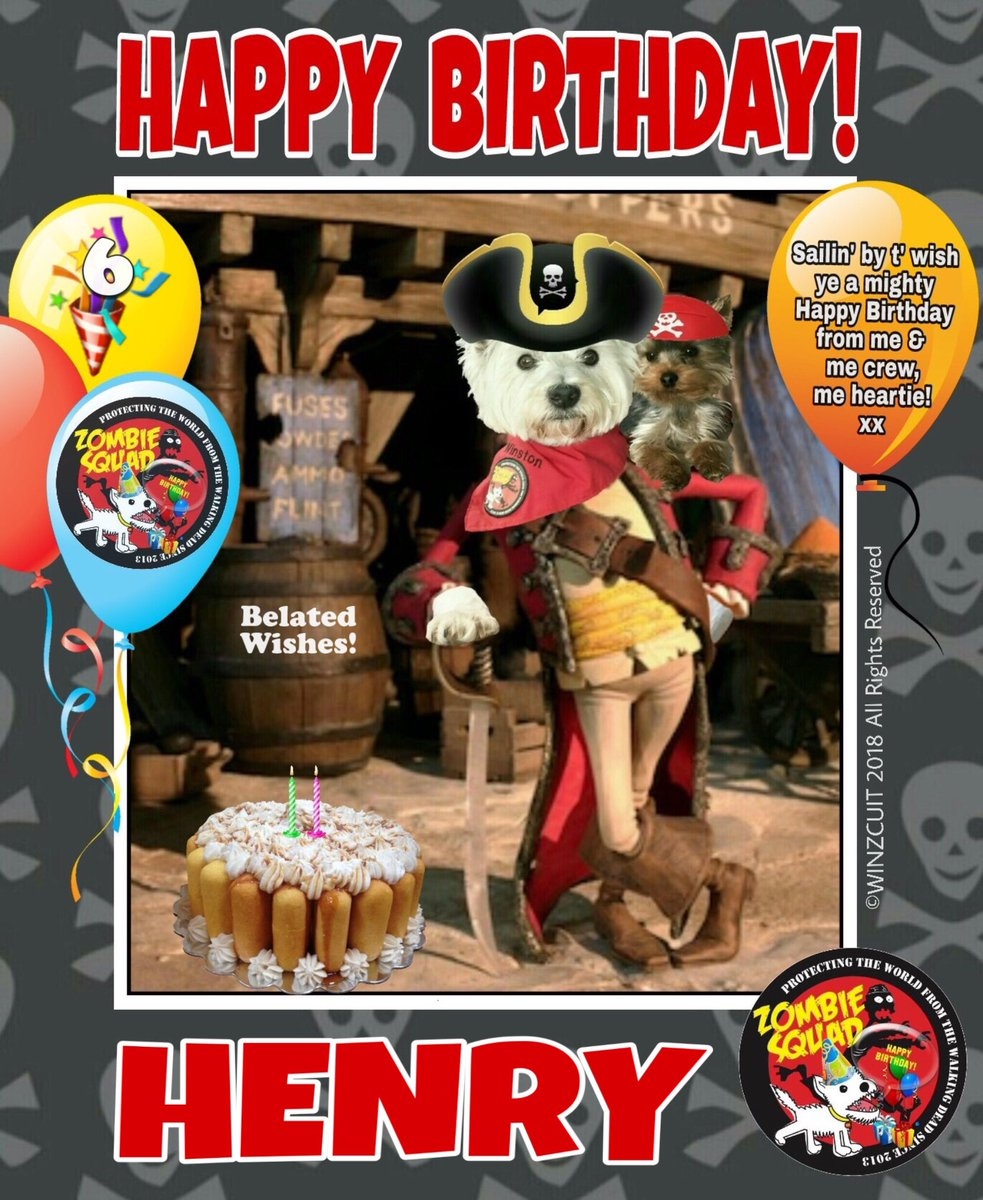 🎂Wishing a BELATED 🎁HAPPY 6th BIRTHDAY🎉 to our pawsome pal, HENRY from Leada Billy & your ZombieSquad pals. Sorry we missed your special day on 25 August... we hope it was full of tasty treats, belly rubs & cayke, soldyer. RaaAAA!! 💜🎂🎁🎉 @TillytheWestie @ZombieSquadHQ #ZSHQ https://t.co/lQelYyKxM2