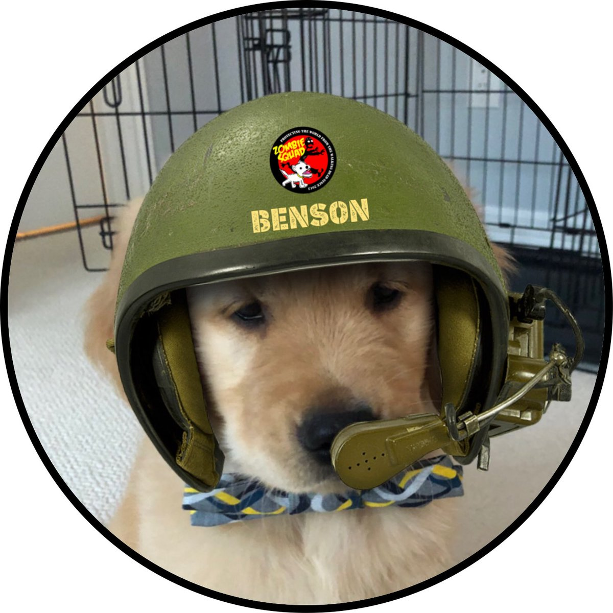 Welcome to #ZSHQ Pvt Benson @cgbosslady1 we have prepared your patrol kit, bark when you need support from @ZombieSquadHQ *salutes* https://t.co/Cp6LMw0IG2