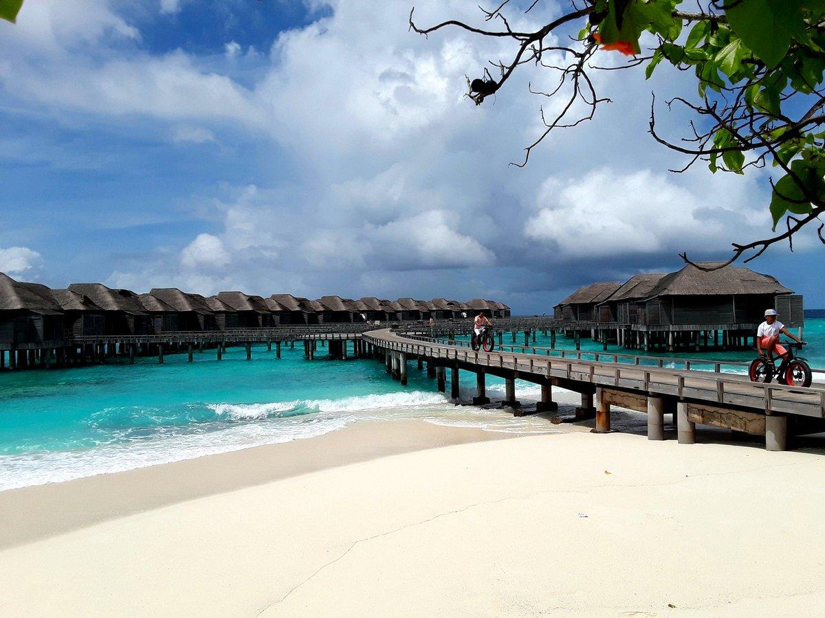 #jamanafaru #maldives #beach #whitesand #clearwaters https://t.co/O4Cn8GfvxV