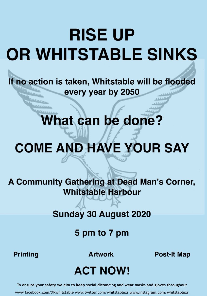 Today #whitstable See you there 💚