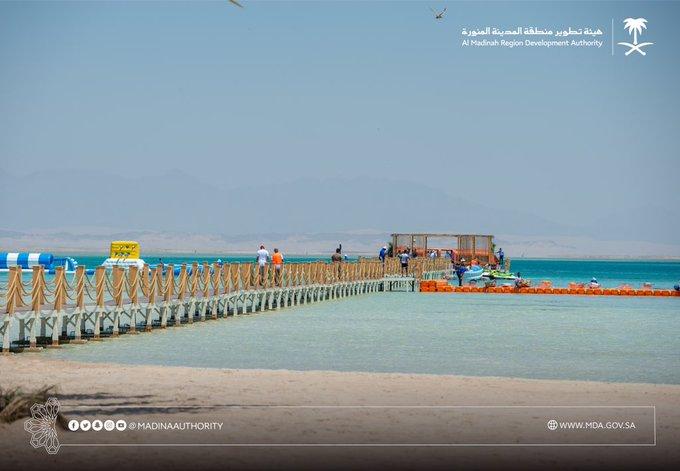 هيئة تطوير منطقة المدينة استقبال أولى رحلات سفن الكروز السياحية معلومات مباشر