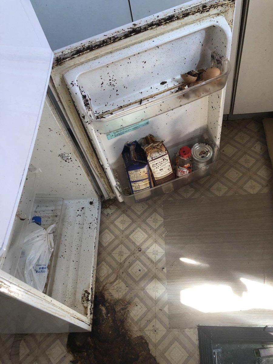 寮を半年近く無料で貸してあげてた若いヤツが退去後に「清掃しました」って言ってた部屋なう一枚目の黒いやつは全部散っちゃいコバエとウジ虫…「何で掃除して退去しないの?」って聞いたら「自分冷蔵庫使ってないんで!」だって…これは流石に怒っていいよね?😅