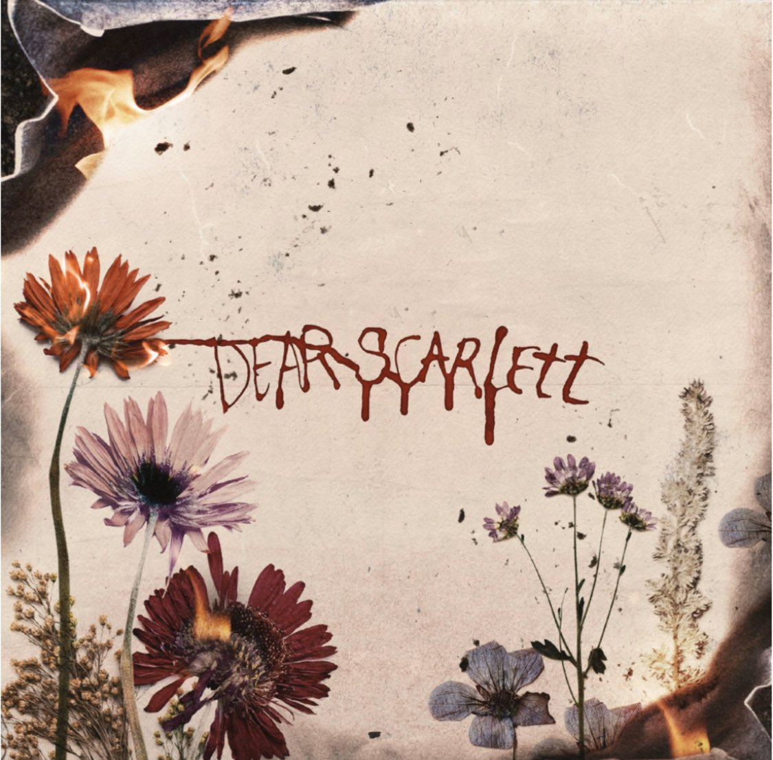 Pre Save my Album 'Dear Scarlett' - drops Sept 8th