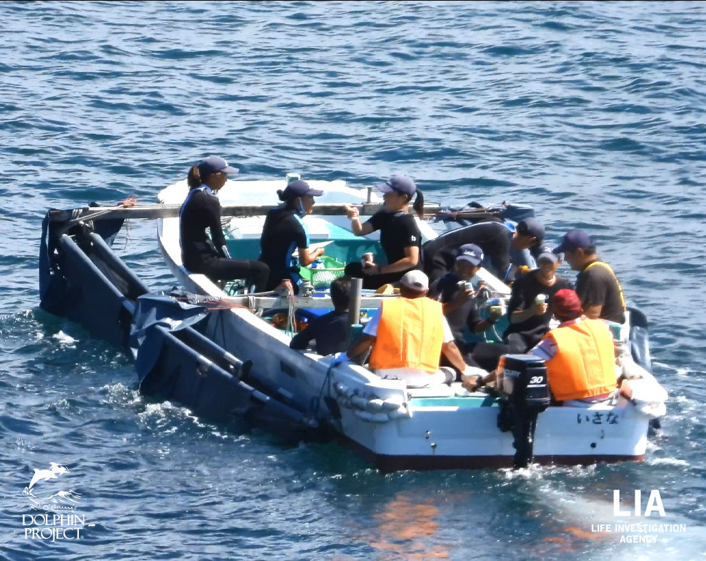 Taiji: On the first day of the 2020/21 drive season, the hunters drove in a small pod of 4 bottlenose dolphins. All 4 of them were taken captive. TAKE ACTION: https://t.co/BkupXmhEip  Sept. 1, 2020 | #LifeInvestigationAgency and  #DolphinProject https://t.co/KdVVVqloWK