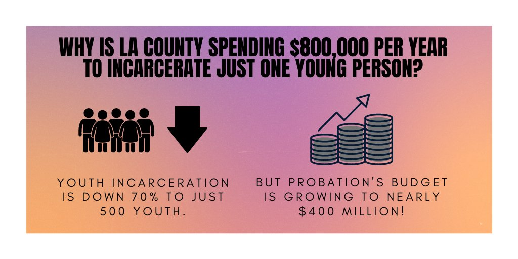 LA County must invest in youth, not a bloated budget. $800,000 can transform a young person's life!  Why is the Board of Supervisors investing in a punitive, outdated traumatizing system? #CareNotCages @HildaSolis @mridleythomas @SheilaKuehl @SupJaniceHahn @kathrynbarger https://t.co/JdhldsDkl4