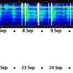 Image for the Tweet beginning: #SchumannResonance first half of September