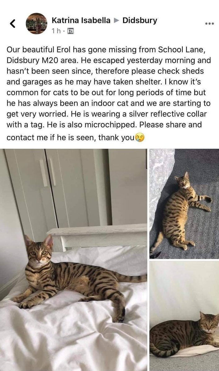 ⚠️ MISSING FROM #DIDSBURY PLEASE SHARE ⚠️  If anybody has any information or may know where Erol could be please get in touch. If you live in the area please keep a lookout and check your sheds and garages in case he is locked in. Thank you. https://t.co/a7iqylsOnP