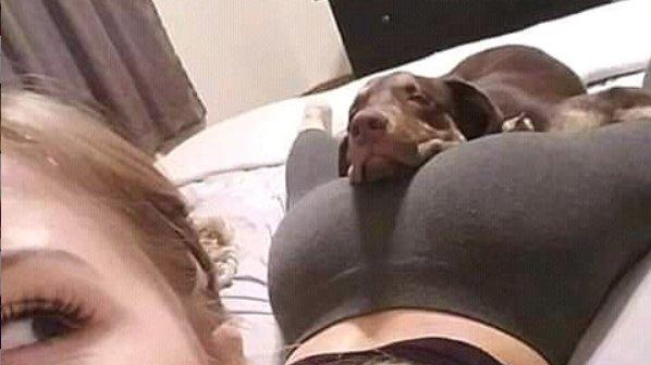 Σκυλίσια ζωή σου λέει μετά.......