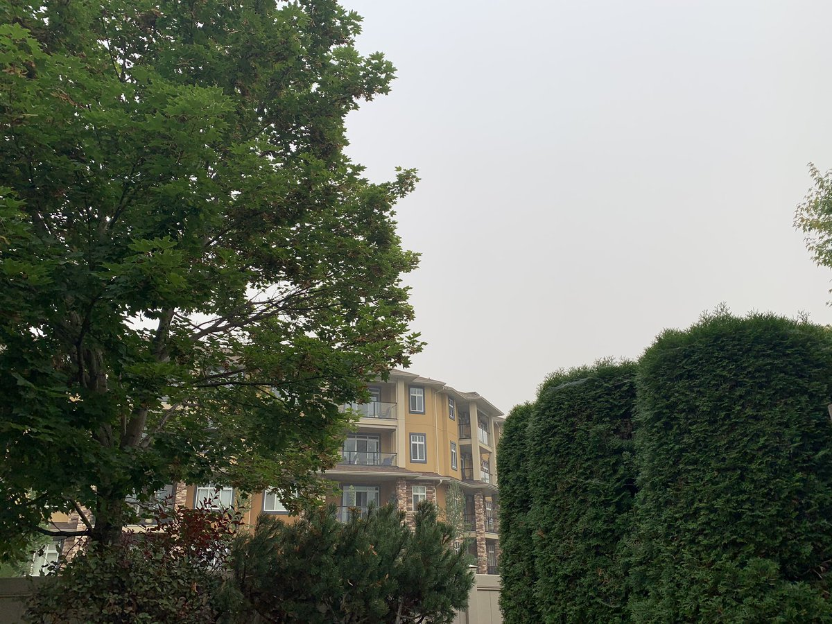 Smoky day in the Okanagan. That's not cloud. And the forest fire smell is stronger than it's been in a while. https://t.co/rrP9uo99hB https://t.co/CaTmlA8HyP