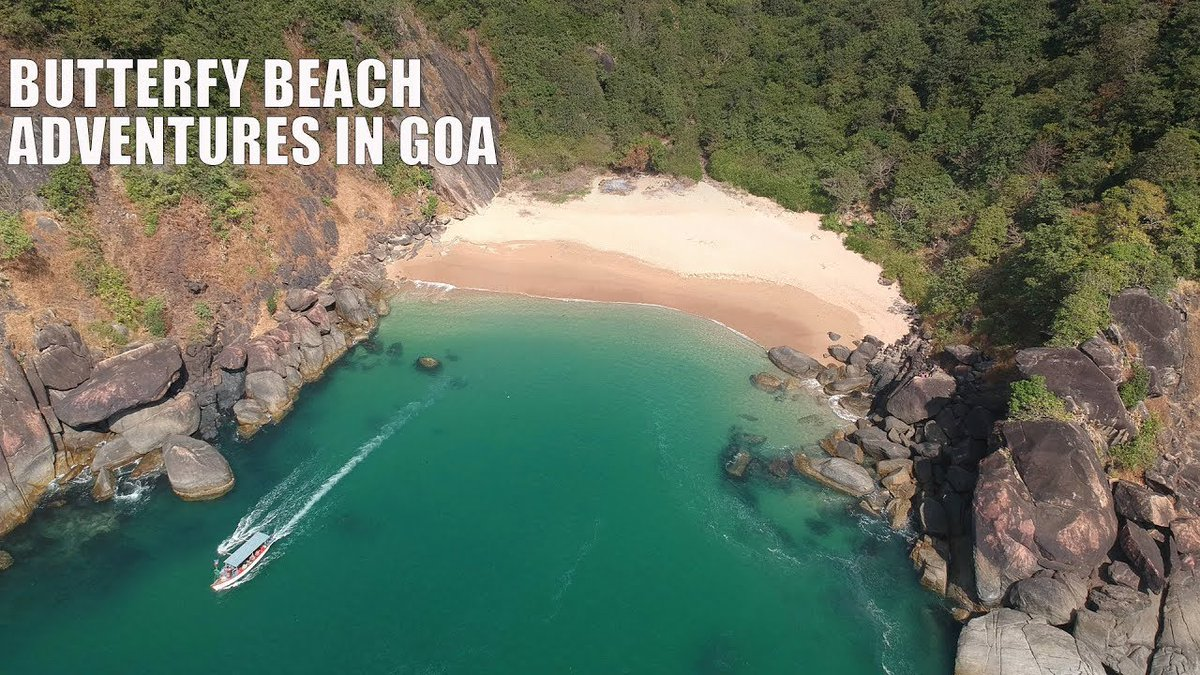 Butterfly Beach #Goa, You can bag the best time of your vacation at Butterfly Beach which is north of Palolem Beach in Southern Goa.. Photo courtesy-Thrillophilia #ButterflyBeach #travel_journey #traveljourney #naturelover #beautifulworld #closetothenature #travellover #travel https://t.co/9fahxbMI5h