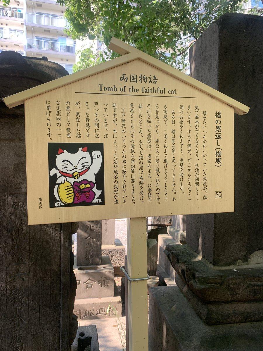 回向院の猫塚、珍しい猫のお墓もとい昔三味線の○○にされた猫たちの供養塔、動物塚が多いせいかペット葬の人気所らしい、今は看板猫っぽい猫ちゃんがサービスしてくれました(^q^)