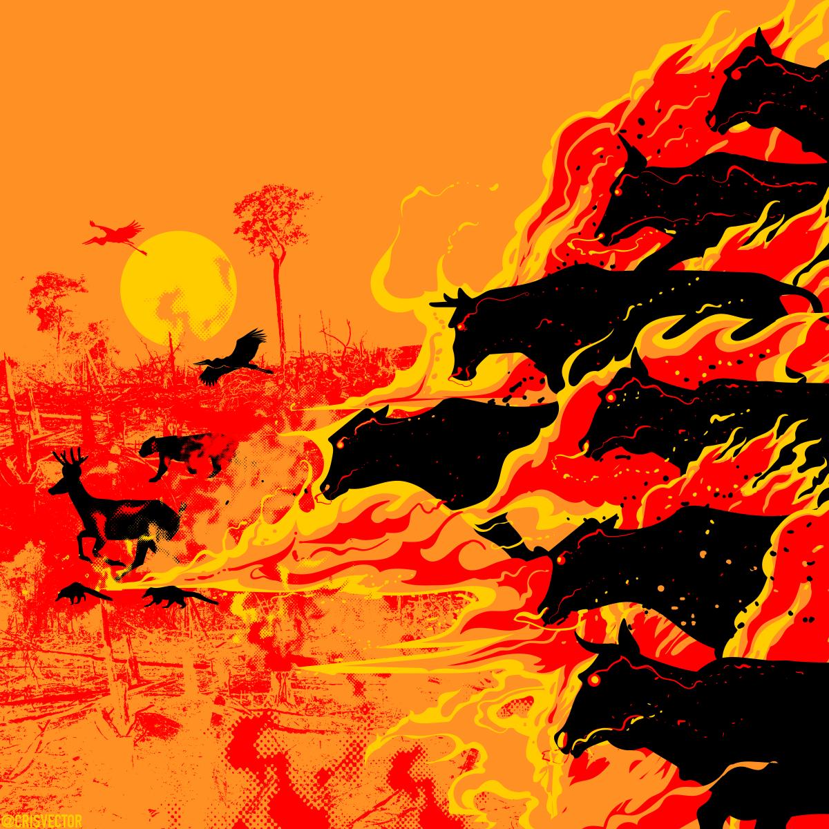 E a boiada continua passando sobre o Pantanal.   #PantanalEmChamas #IncêndioPantanal https://t.co/9FAIuOTYl4