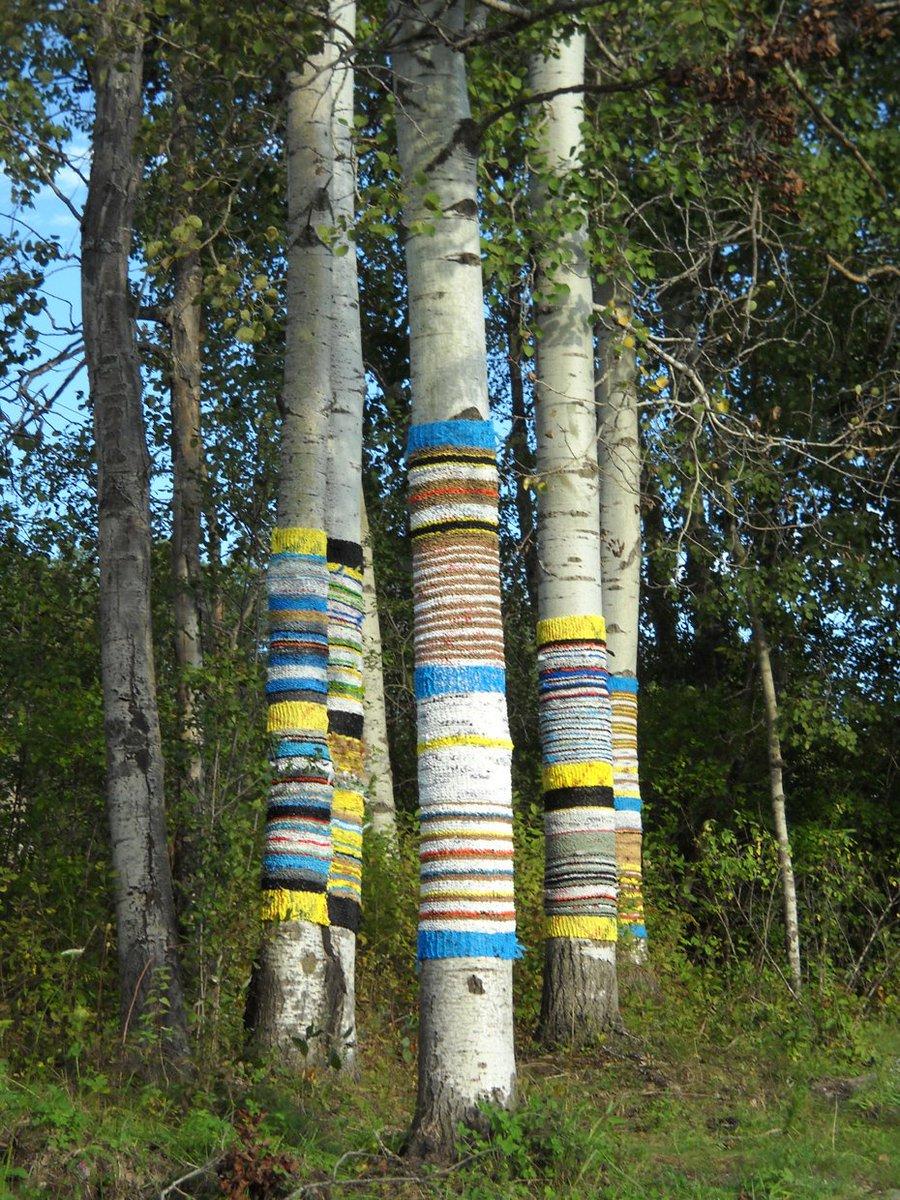 Isabelle Garbani, Knit for Trees, 2011, temporarily installation #womensart
