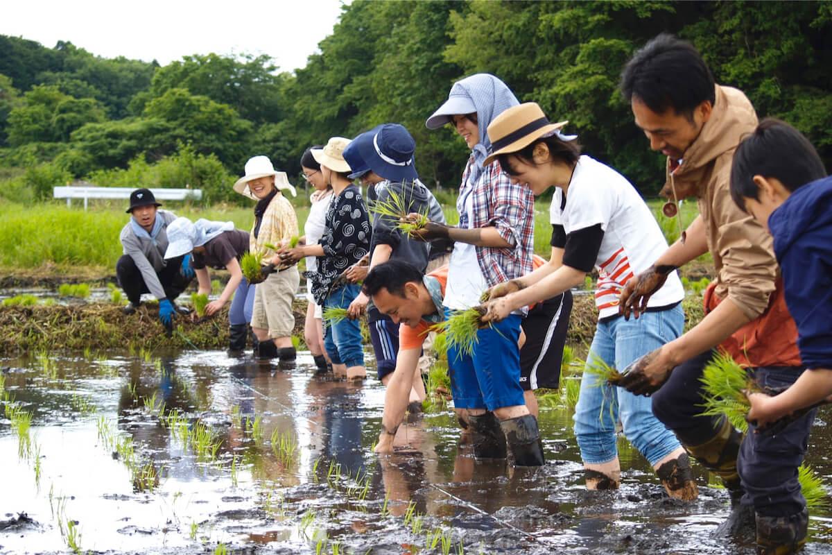 【新しい求人】顔の見える人たちとまちを耕す不動産屋さん#求人 #omusubi不動産 #松戸 #まち #不動産 #BONUSTRACK