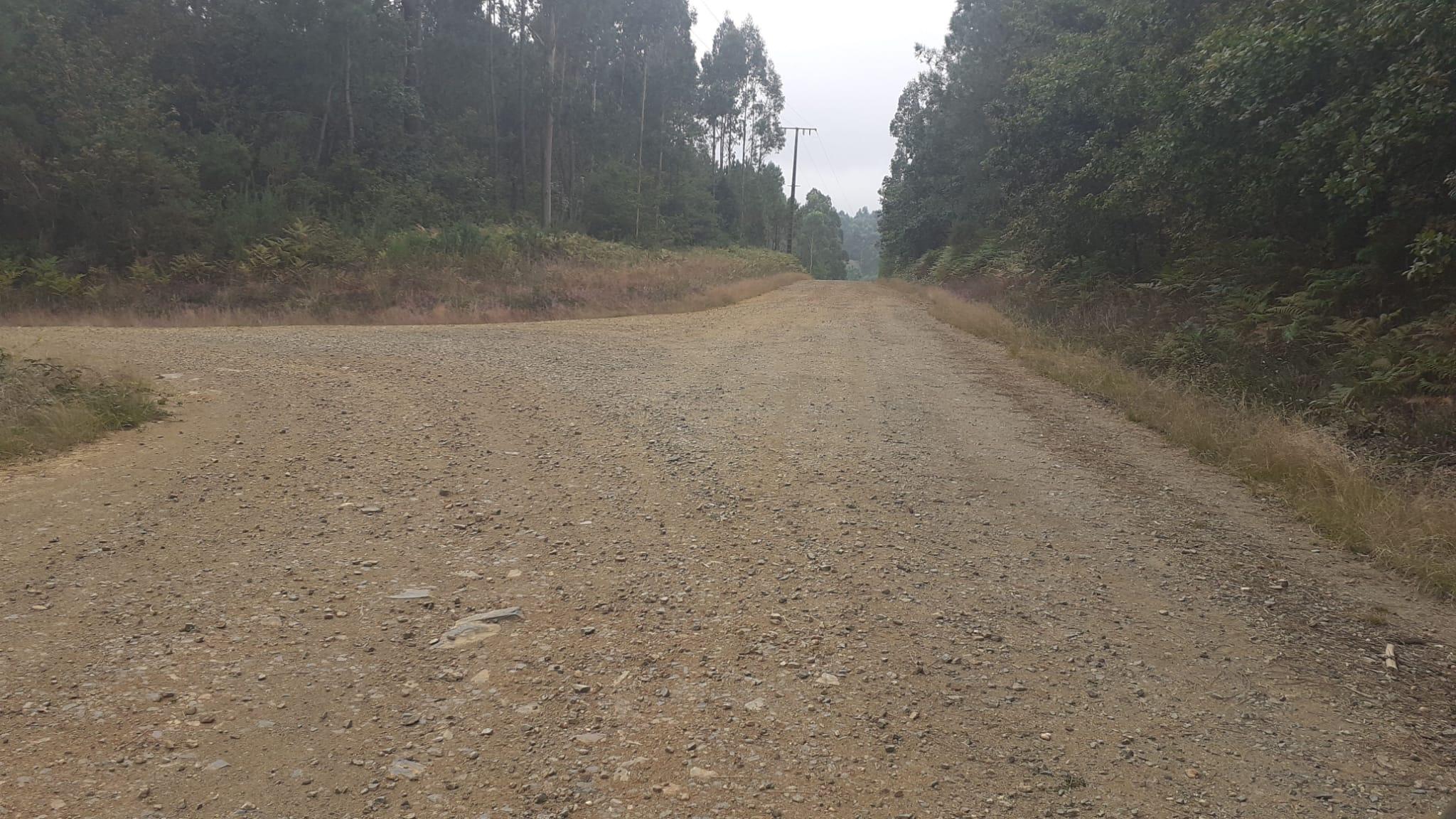 SCER + CERT: Rallye Terra da Auga - Comarca de Arzúa [25-26 Septiembre] Eh3zIedXgAEgFgX?format=jpg&name=large